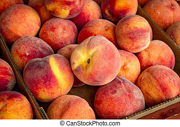 Fresh picked peaches from orchard - Display of box filled...