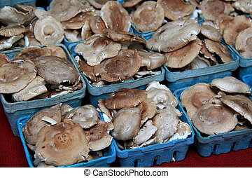 Fresh picked Shiitaki mushrooms are full of flavor and a...