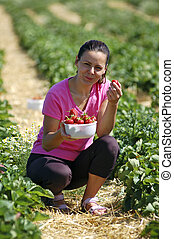Fresh picked strawberries held by a pretty girl