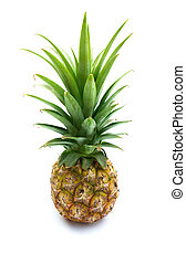 Fresh pineapple fruit on white background