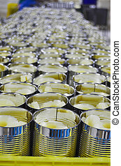 Fresh Pineapple slices in syrup in aluminium can - Tropical...
