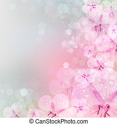 Fresh, pink, soft spring blossoms on pink bokeh background