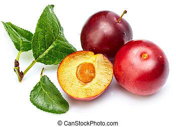 Fresh plum in cut with green leaf.