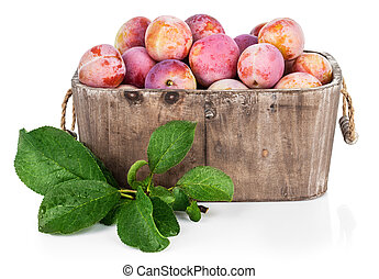 Fresh plums in wooden basket with green leaves