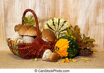 Basket full of iporcini mushrooms solated on wood background. Fresh Stone mushrooms and vegetables.