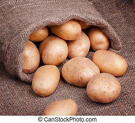 Fresh potatoes in bag