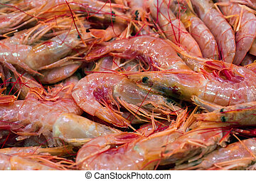 Fresh prawn for sale at the market