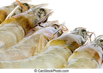 Fresh Prawns - Isolated macro image of fresh prawns.