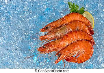 Fresh prawns on ice drift - Group of fresh prawns placed on...