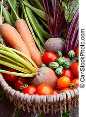 Fresh produce from a vegetable garden gathered in a basket