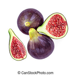 Fresh purple Fig fruit and slices isolated on white background. Food Photo. Top view