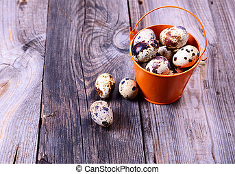 Fresh quail eggs in a bucket on a gray wooden surface