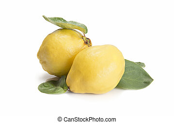 Fresh quinces isolated over white background