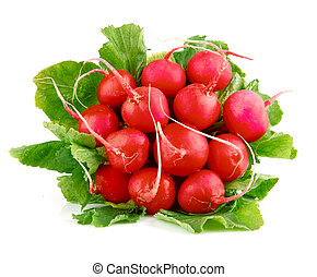 fresh radish fruits with green leaves