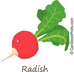 Fresh radish icon, isometric style - Fresh radish icon....