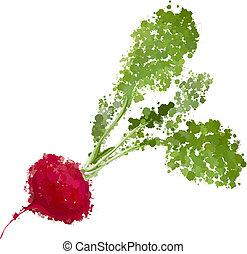 fresh radishes vector illustration of blots
