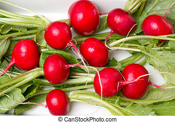 Fresh radishes with leaves in a bowl