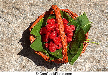 Fresh raspberries in a basket, top view, close-up.