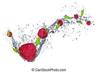 Fresh raspberries in water splash, isolated on white background