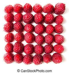 fresh raspberries on a white plate background
