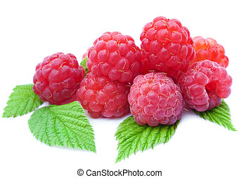 fresh raspberry isolated