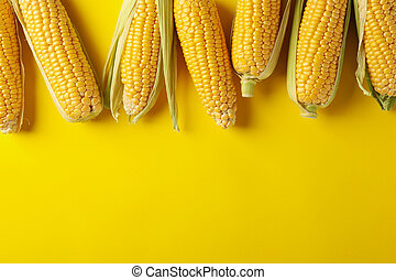 Fresh raw corn on yellow background, top view