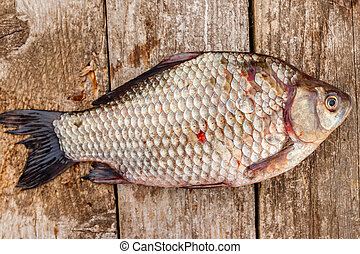 Fresh raw crucian on a rustic wooden table. Top view