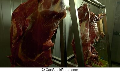 Fresh raw meat hanging in butchers shop. Freshly slaughtered...