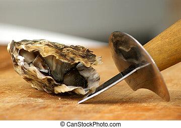 fresh raw organic oyster from the irish west coast