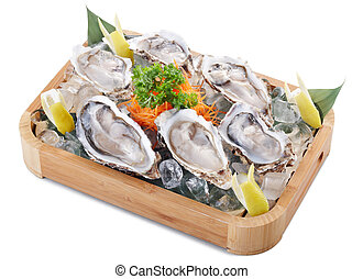raw oyster - fresh raw oysters isolated on white background