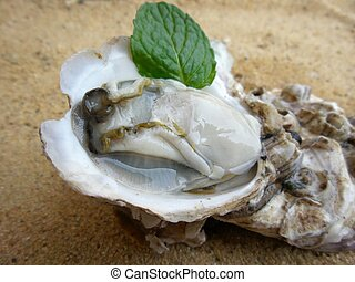 Fresh raw oysters pepper mint leaves