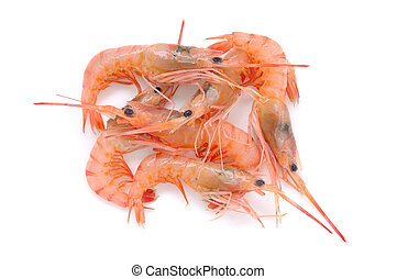 Fresh raw prawns in isolated white background