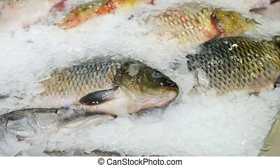 Fresh raw seafood on counter at food market. Slow motion. -...