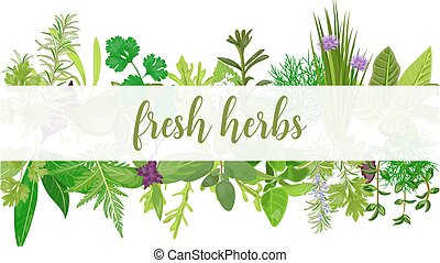 Fresh Realistic herbs and flowers with text. Horizontal. ...