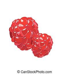 Fresh Realistic Raspberry