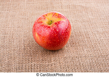 Fresh red apple placed on canvas