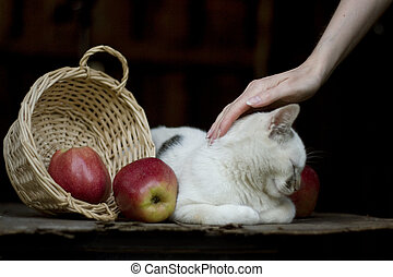 Fresh red apples in a wattled basket on an old wooden table