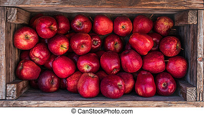 Fresh Red apples in a wooden box. Autumn harvest concept. Top view
