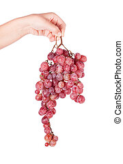 Fresh red grape close up