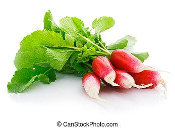 fresh red radish with green leaf