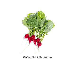 Fresh red radish with green leaves isolated on white background.