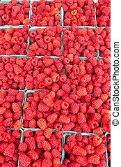 Fresh red raspberries on display