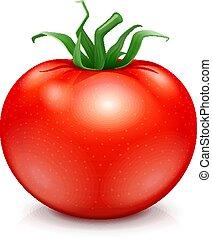 Fresh red ripe tomato.