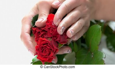 Fresh red roses in female manicured hands. Young woman hands...