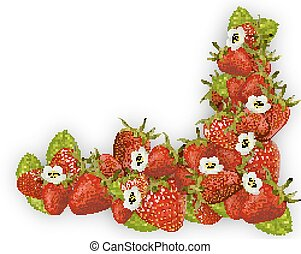Fresh red strawberry frame