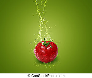 Fresh red tomato with water splashes on green background.