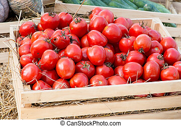 Fresh red tomatoes in a basket