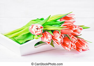 Fresh red tulips flowers on a white background. Copy space