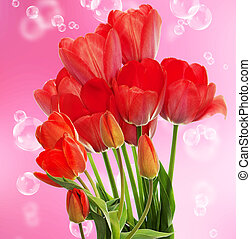 Fresh red tulips. Springtime