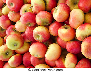Fresh red yellow apples on the market.